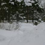 2010. 02.28. minu aias