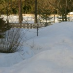 2011.03.05. minu aias