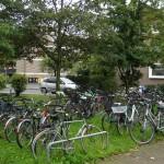Jalgrattaparkla Düsseldorfi ülikoolilinnakus. Ei saa kindlasti eeldada, et selles parklas oleks vähe liikumist ja muru ära ei tallataks, mistõttu peaks ju suure koormusega alale kindlasti panema kõvakatte. Mina ei tea – rattaid oli muruplats täis, kuid rohelus vohas.