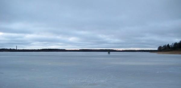 Uisujää. Harku järvel 2013