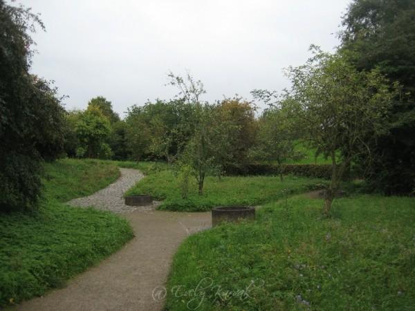 Kogu madal roheline ala saab olla niitmata. Teed piiravad madalad servad loovad korrastatud mulje. Südpark Düsseldorf. Aiakujundus. Muru asemel_00013