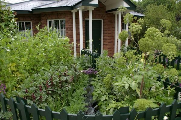 10.Väike pind ja palju taimi. Värske roheline oma aiast. Kuidas planeerida_00013