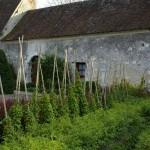 Chenonxeaux le Chateau des Dames köögiviljaaed Prantsusmaal.Värske roheline oma aiast. Kuidas planeerida_00010