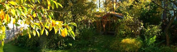 Aiakujundus. Sügis aias. Oktoober