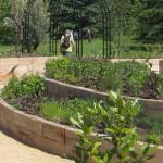 Puitprussidest kaarjad kõrgpeenrad tarbeaia nurgas. London Kew Gardens